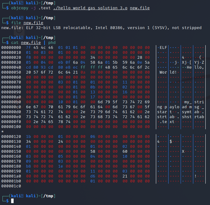 object copy still producing an ELF binary, confirmed with a hex dump.