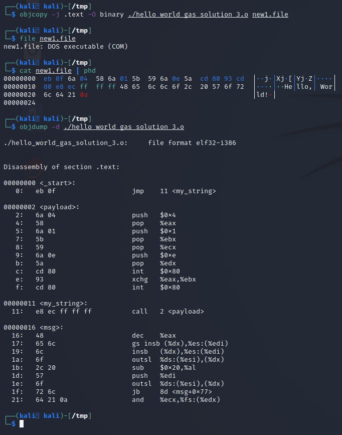 hex and object dump of the copied .text section from the elf binary showing it contains only the payload.