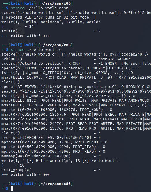 comparing strace output of our NASM and C Hello World applications